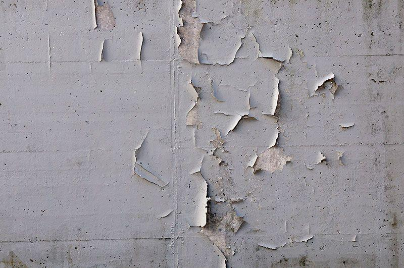 cracking wall plaster